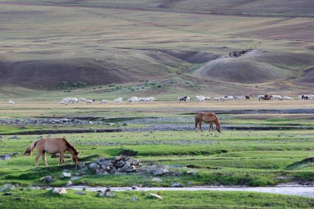Mongolia09