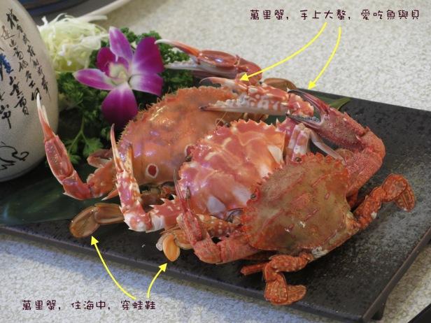 龜山島與螃蟹與藏酒001
