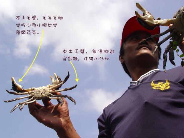龜山島與螃蟹與藏酒002