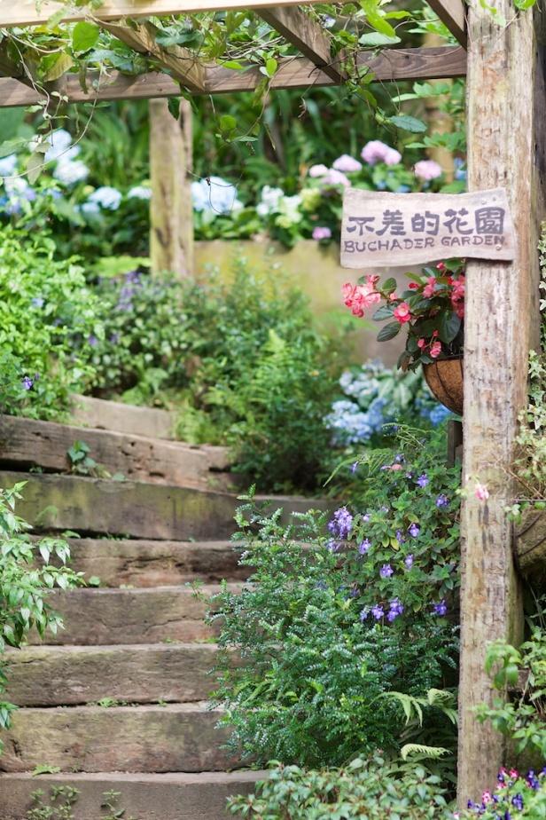 卓也小屋不差的花園001