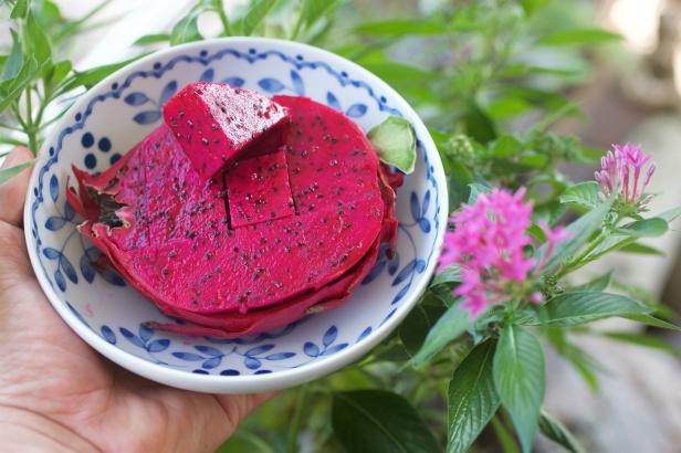 01王明郎的火龍果,果皮只有薄薄一層。